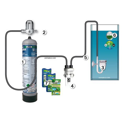 kit co2 aquarium jbl proflora u504 syst 232 mes et kits co2 pour aquariums animal co animal