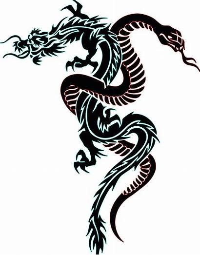 Snake Tattoo Dragon Clipartmag