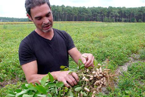 chambre d hote 65 côtes landaises armagnac et cacahuètes weva votre