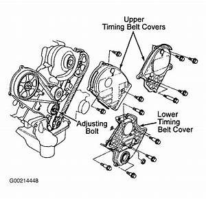 1995 Honda Accord Serpentine Belt Routing And Timing Belt