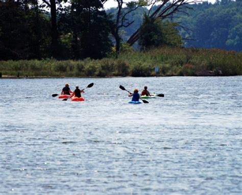 Pedal Boat New York by 40 Worth Of Canoe Kayak Pedal Boat Paddle Board Or