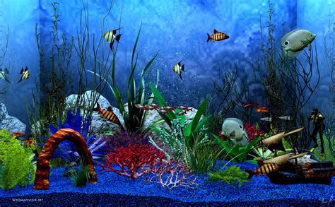 Aquarium Wallpaper Animated Free - aquarium background windows 7 animated aquarium