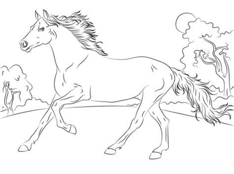foto de Kolorowanka Biegnący koń arabski Kolorowanki dla dzieci