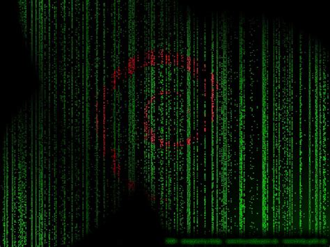 Matrix Wallpaper Animated Iphone - moving matrix wallpaper windows 10 wallpapersafari