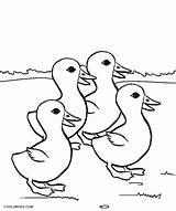 Duck Coloring Pages Ducks Baby Printable Still Cute Getcolorings Cool2bkids Pond Animals Getdrawings Colorings sketch template