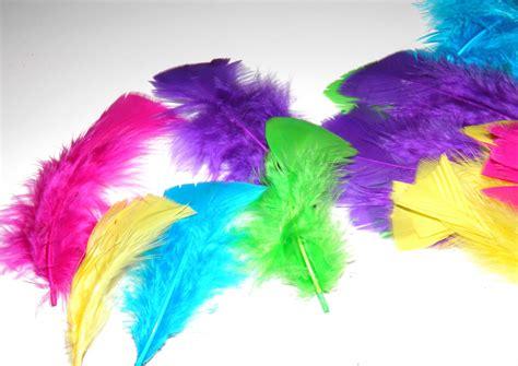 Plumes plumes plumes Idées de fêtes annif