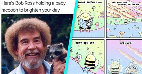 Reddit Wholesome Memes - 35 wholesome memes so nice the rest of the internet will seem like hot trash 22 words