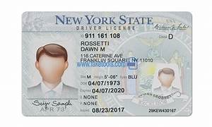 New York Driver License Psd Template   High Quality Psd Template