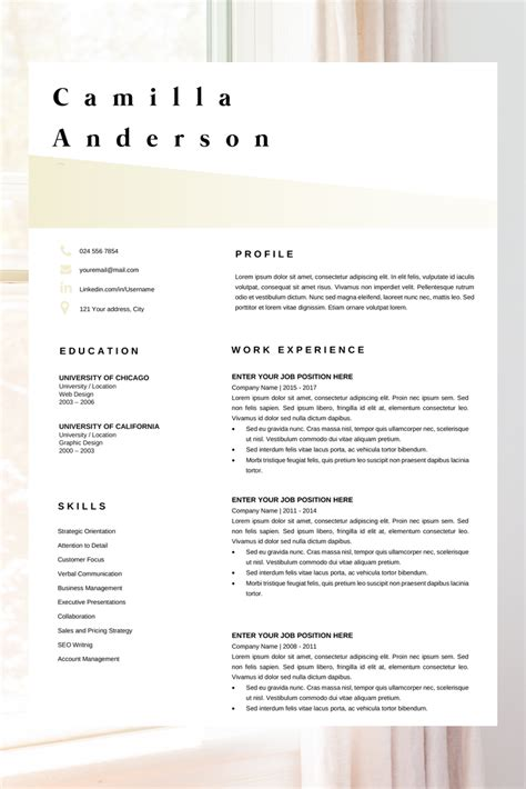 Professional Cv Layout by Resume Template Microsoft Word Professional Cv Layout