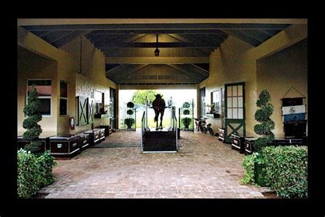 healthy stables  design stable interiors stables horses und horse stables