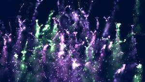 Fairy Sparkles / Black Background Stock Footage Video ...