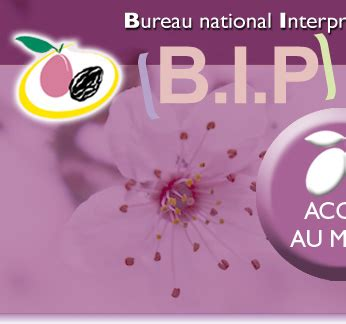 bureau interprofessionnel du pruneau le site du pruneau d 39 agen bip bureau national