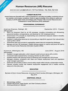 human resources resume sample writing tips resume With human resources resume examples
