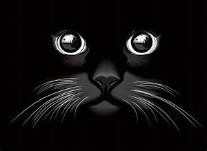 Black Cat Eyes Vector Background (Free) | Free Vector Archive