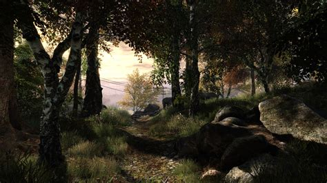 approached  foliage   vanishing  ethan carter
