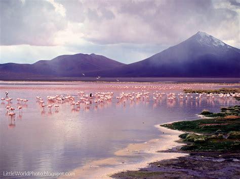 bolivia laguna colorada  world photo