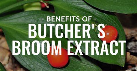 Benefits Of Butcher's Broom Extract