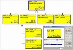The Primavera P6 Professional Work Breakdown Structure