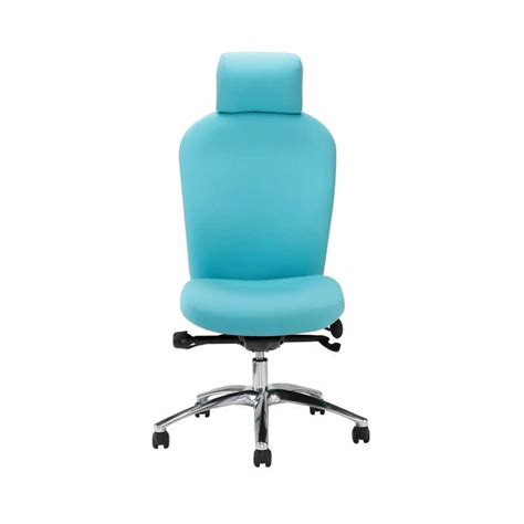 p83 posturemax back care chair with adjustable neck