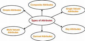 Types Of Attributes