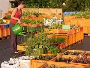 Urban Gardening Hamburg : buch urban gardening ber die r ckkehr der g rten in die stadt ~ Frokenaadalensverden.com Haus und Dekorationen