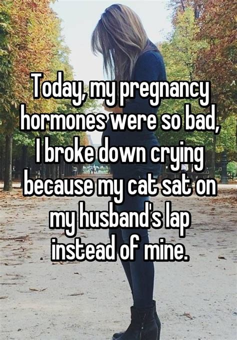 Pregnancy Hormones Meme - today my pregnancy hormones were so bad i broke down crying because my cat sat on my husband s