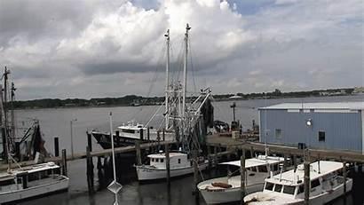 Fishing Florida Region North East Seafood Harbor