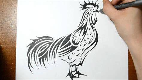 draw  rooster tribal art real time drawing