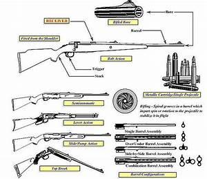 Pin On Forensics