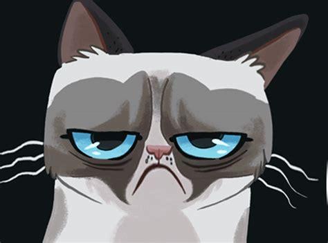 11 Grumpy Cat Pictures  Hilarious Grumpy Cat Gallery