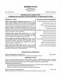24 award winning ceo resume templates wisestep With executive level resume template