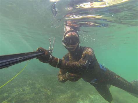 chasse sous marine et apn 233 e toute l information indispensable