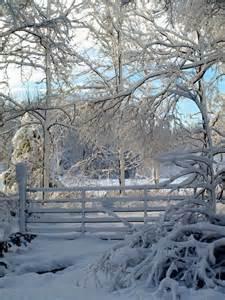 Beautiful Winter Snow Wonderland