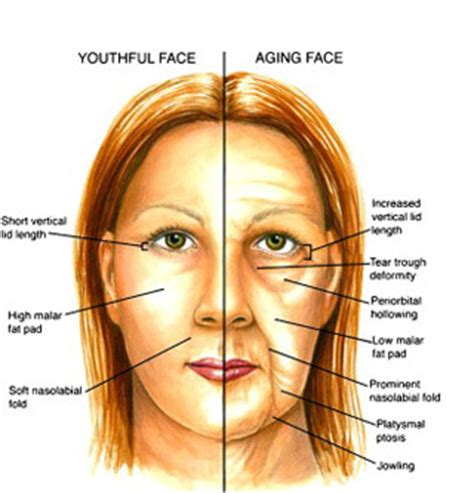Do You Know Why Your Face And Eyes Are Aging?  Easy Eye. Makeup Signs Of Stroke. Cincinnati Signs Of Stroke. Pancreatic Cancer Signs. Junior Class Signs. Percent Signs Of Stroke. Diy Logo Signs Of Stroke. Safety Driving Signs. Zodiac Sign Date Signs Of Stroke
