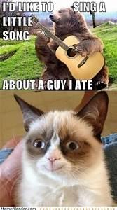 grumpy cat is happy - Dump A Day