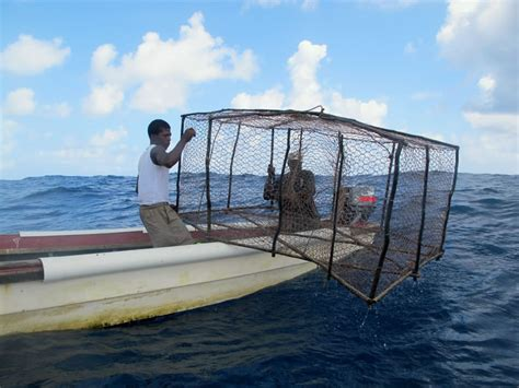 Big Jamaica Boat by Restoring Jamaica S Pedro Banks Kslof Living Oceans