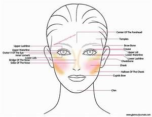 17 Best Images About Facial Anatomy On Pinterest