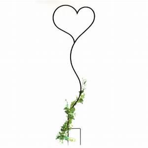 Arche Metal Pour Plante Grimpante : dandibo tuteur pour plante grimpante c ur support pour ~ Premium-room.com Idées de Décoration