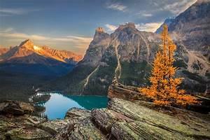 Mountains, Scenery, Autumn, Lake, Canada, Parks, Crag, Yoho, Lake, Oand039hara, Nature