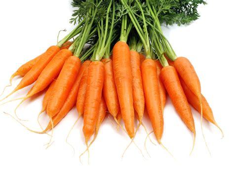 cuisiner radis noir salade de carottes aux herbes recettes
