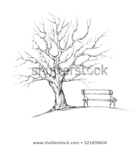 illustration tree  leaves romantic bench stock