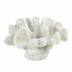 White Coral Decor Wholesale at Koehler Home Decor