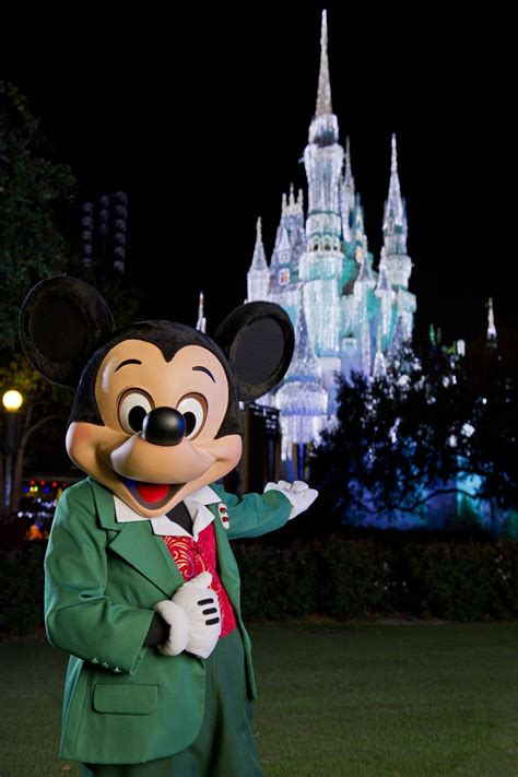 times  visit disney world