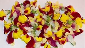Getrocknete Blüten Kaufen : l wenm ulchen gelb rot weis essbare bl ten kaufen ~ Orissabook.com Haus und Dekorationen
