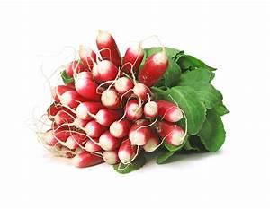 Culture Des Radis : semis des radis ~ Melissatoandfro.com Idées de Décoration
