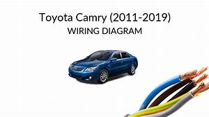 Toyota Camry Xv50  2011-2019  - Wiring Diagrams