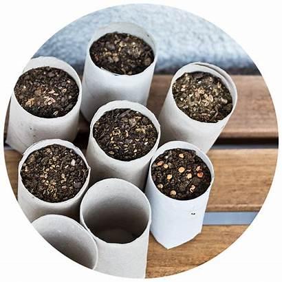 Activities Recycling Garden Using Reducing Activity Gardening