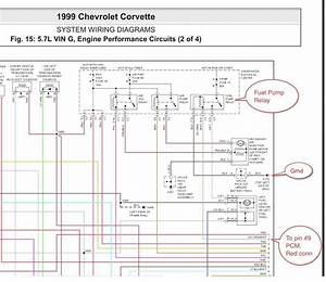 Bmw E36 Fuel Pump Wiring Diagram