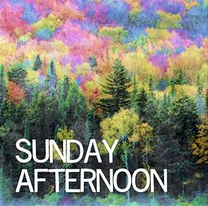 Sunday Afternoon | The Wilderness