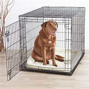 Best 25 extra large dog kennel ideas on pinterest cheap for Dog door size by breed